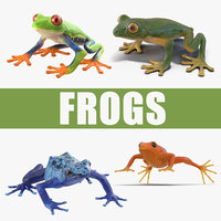 frogs 2 3D