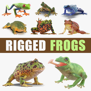 3D rigged frogs