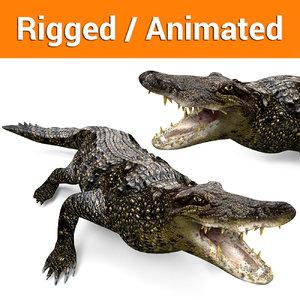 3D crocodile rigged animation model