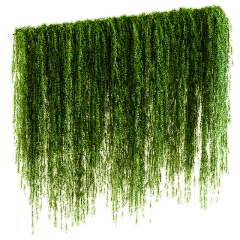 3D wall drooping plant branches
