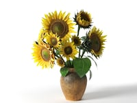 sunflower vase 3D model