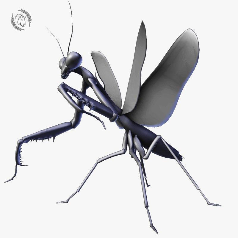 3D praying mantis