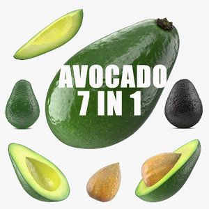 3D model avocado 2