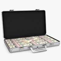 aluminum case money 3D model