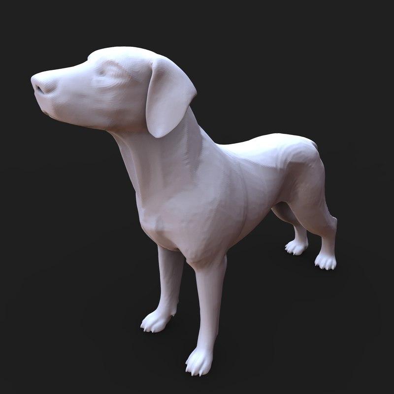 3D american foxhound dog model