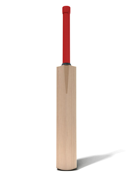 generic cricket bat 3D model