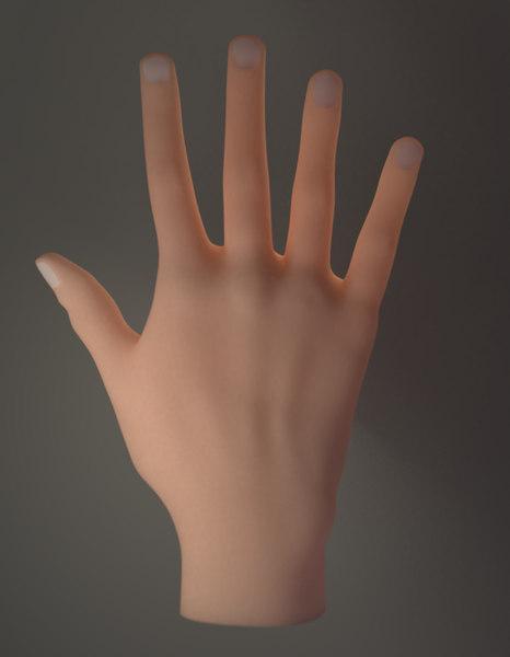 hands blender topology 3D model