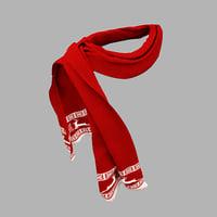 men scarf 3D model