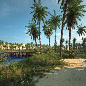 scene oasis desert 3D
