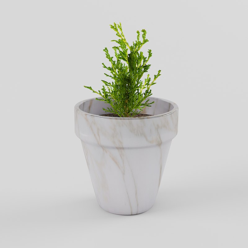 3D plant flowerpot