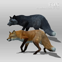 Red and Black Fox Animated with Fur