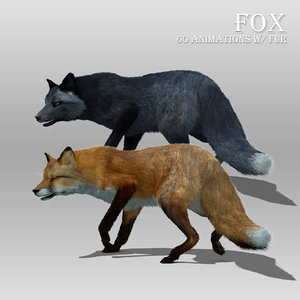 red black fox fur 3D