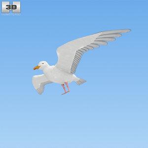 3D gull common
