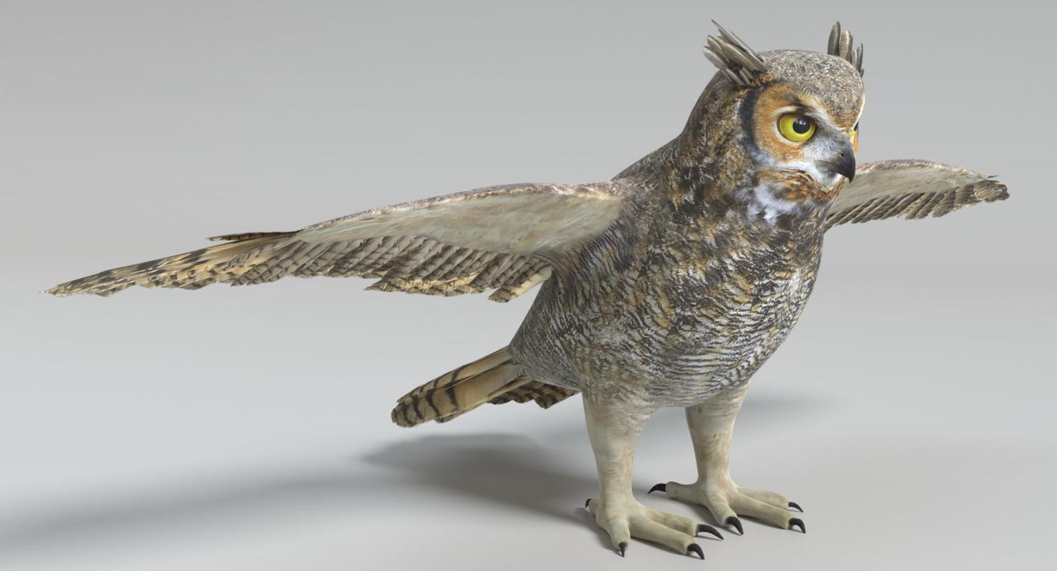 3D model great horned owl - TurboSquid 1234091