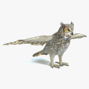 3D model great horned owl