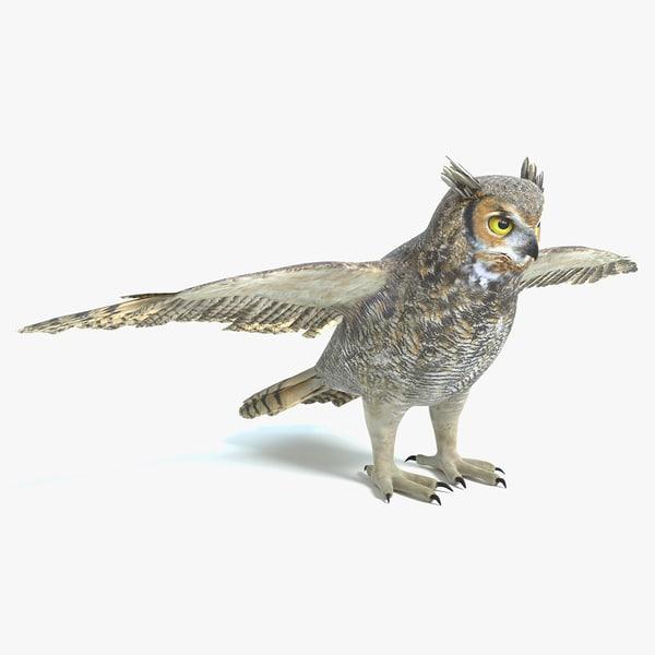 3D model great horned owl