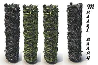 3D mussel pbr