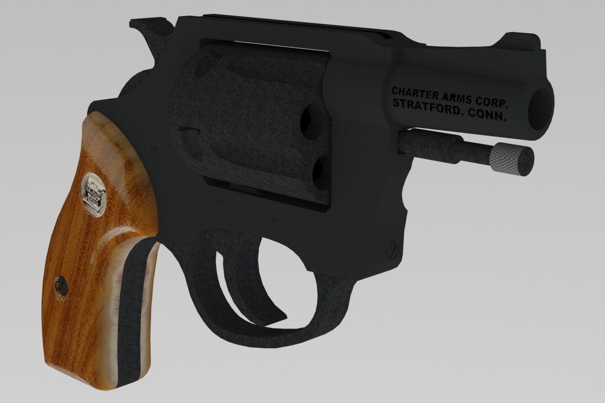 charter arms duty 38 model