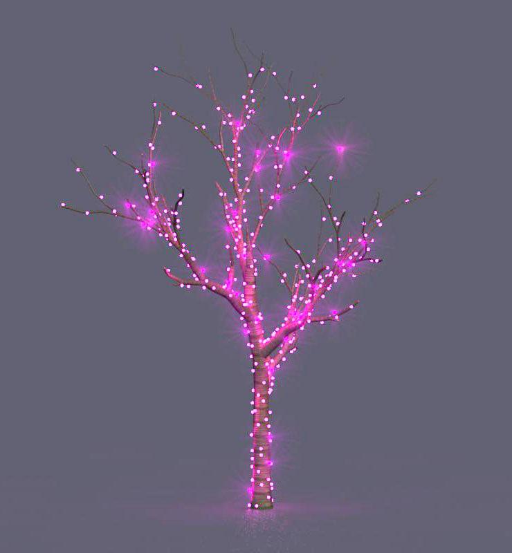 3D model winter effects