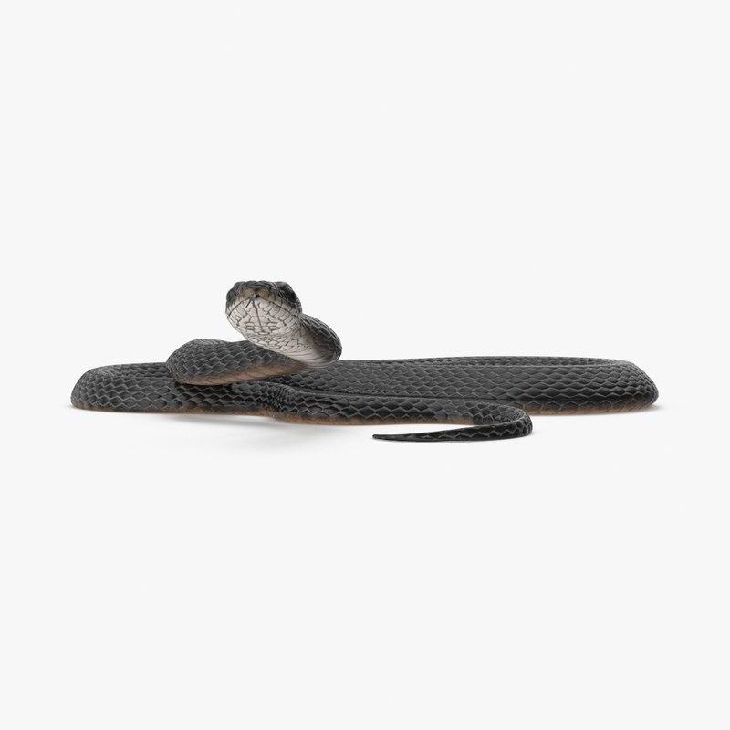 black snake 3D model