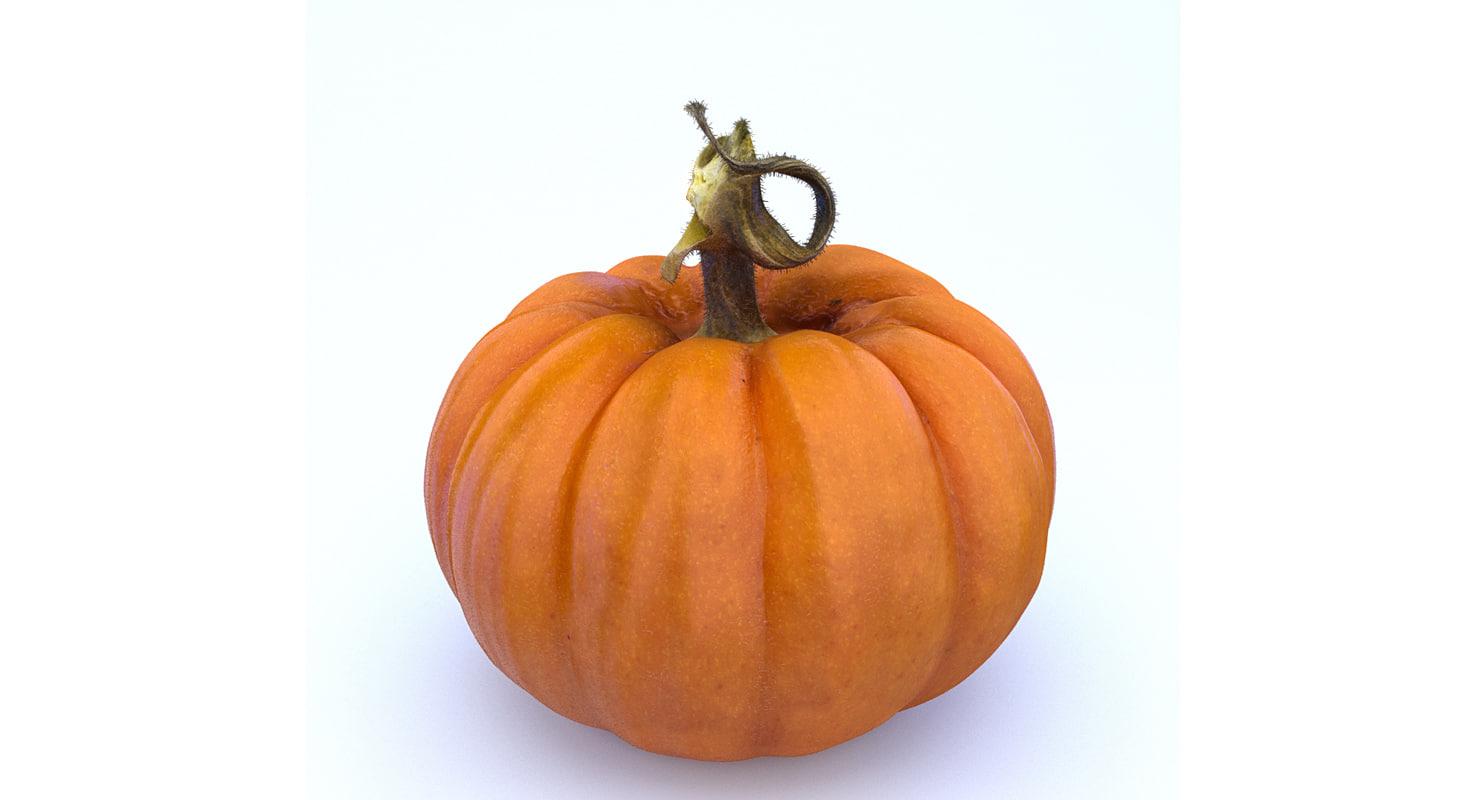 pumpkin photogrammetry 3D model