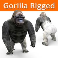 Gorilla Rigged