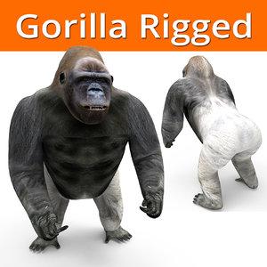 gorilla rigged 3D