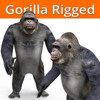 gorilla rigged model
