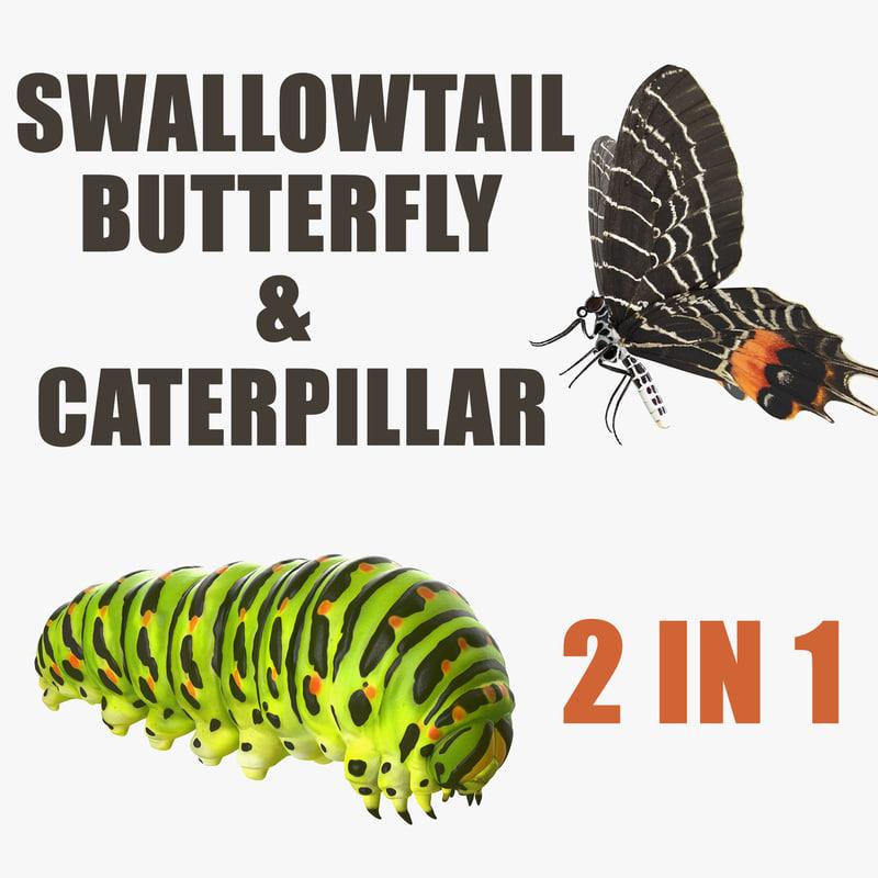 swallowtail butterfly caterpillar 3D model