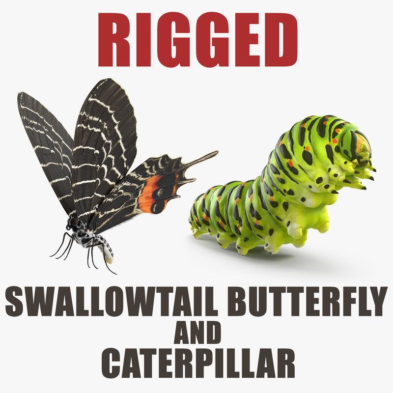 swallowtail butterfly caterpillar rigged model