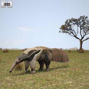 giant anteater ant 3D model