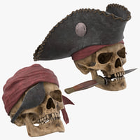 Pirate Skulls Collection