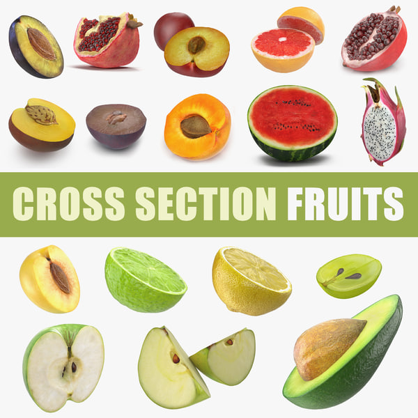cross section fruits 4 3D model
