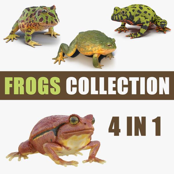 3D frogs 3 model