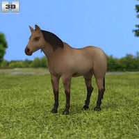 3D quarter america s model