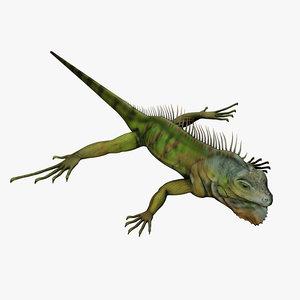 green iguana 3D model