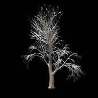 3D winter tree 031 snow