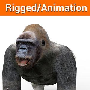 3D model gorilla rigged animation