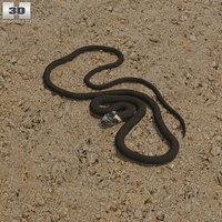 grass snake 3D