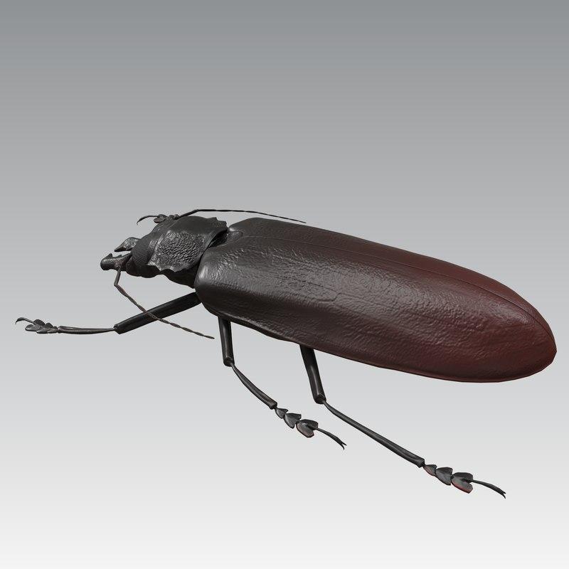 3D model titan beetle