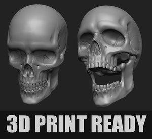 anatomy human skull printing 3D model