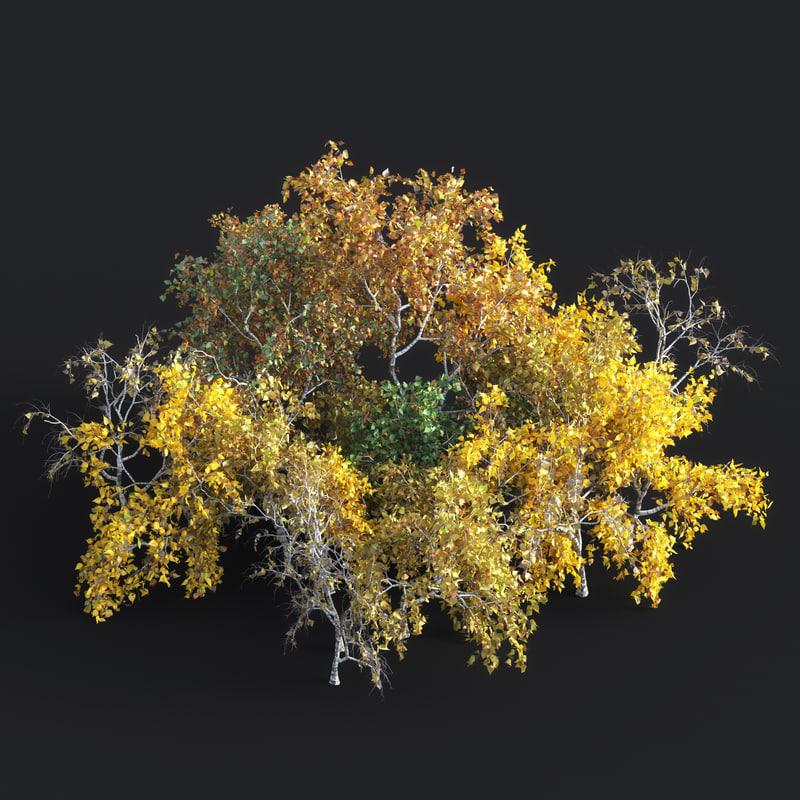 bushes 3D