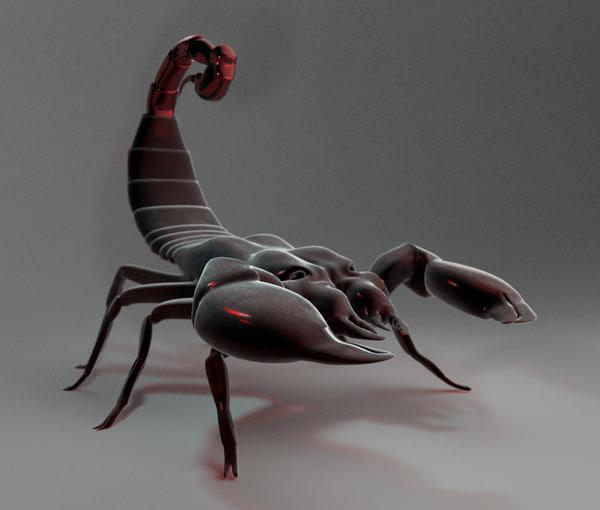 3D arachnid scorpion model