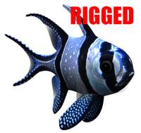 3D banggai rigged