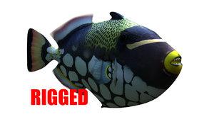 3D model clown trigger fish