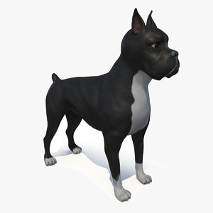 black american 3D model