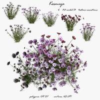Flower_kosmeya_3D