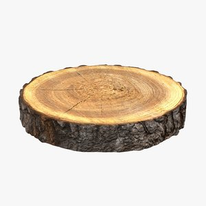 3D wood log slice
