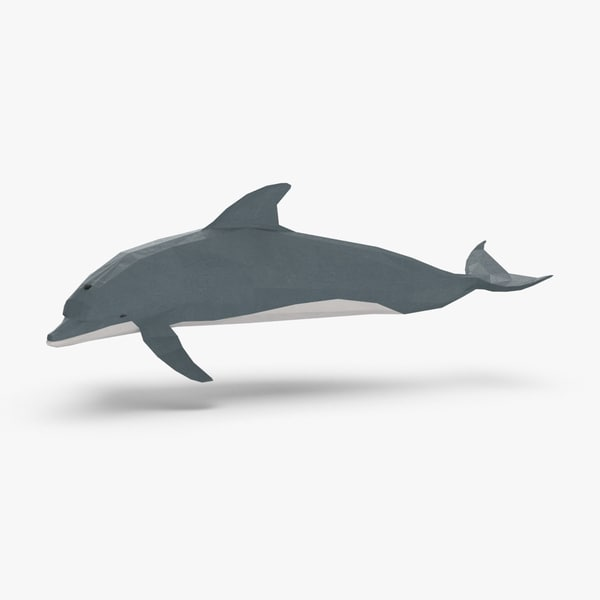 3D model dolphin---turning