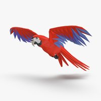 parrot----red-flying 3D